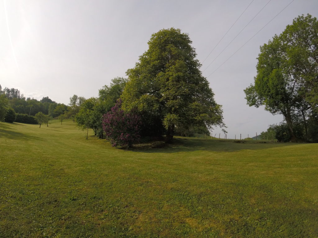 jardin tondu